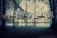 Ali-Imran 3:185
