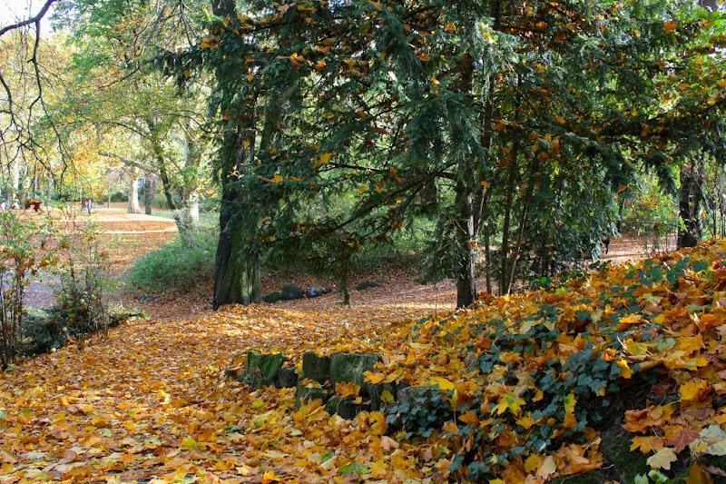 Viktoriapark Berlín otoño