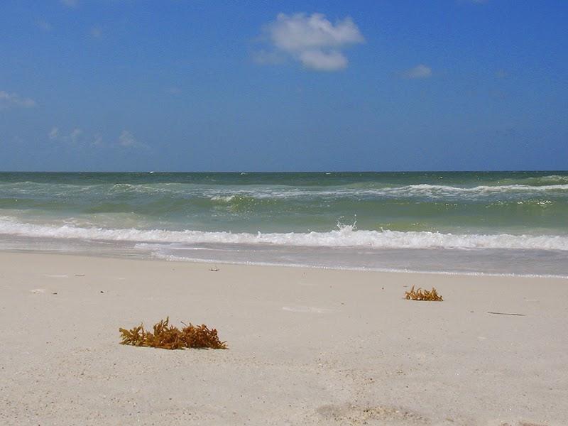 Photo de la plage à Bradenton Beach en Floride