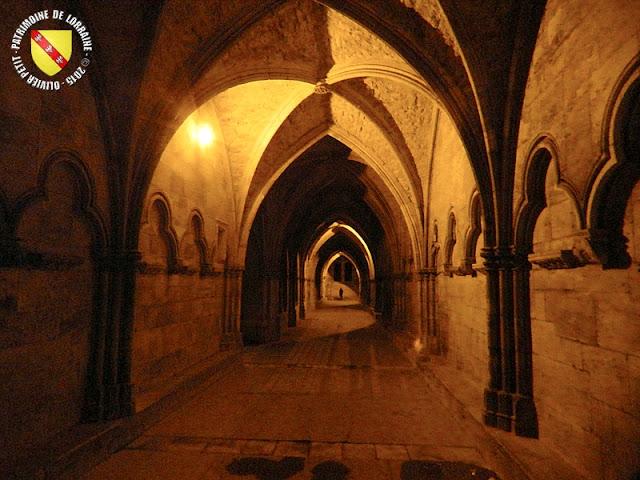 TOUL (54) - Cathédrale Saint-Etienne...la nuit !
