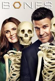 Assistir Bones 11x20 - The Stiff in the Cliff Online
