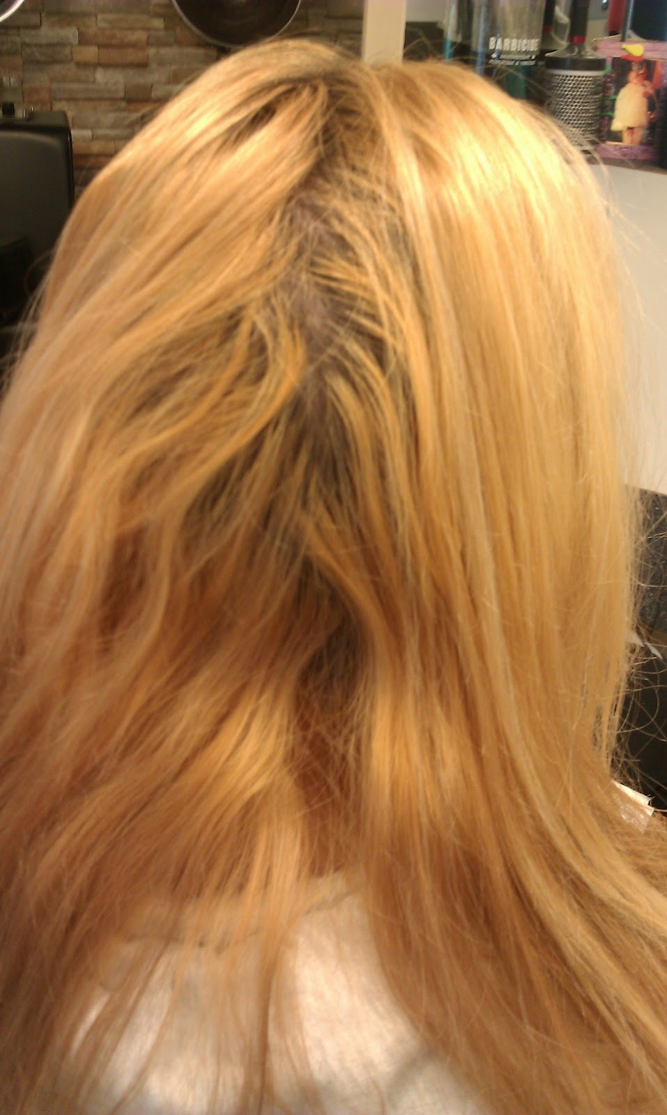 Hair Extensions By Jaclynn Kate Long Hair Extensions