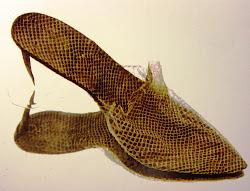 Snakeskin Stilettos