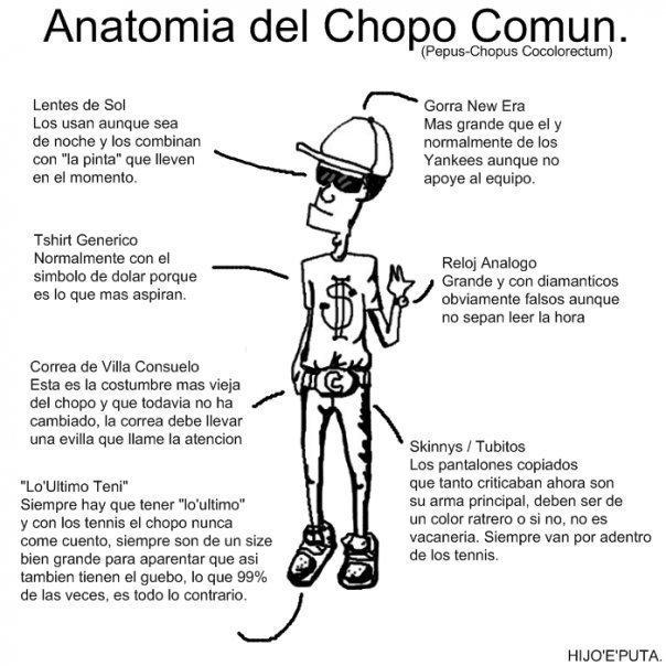 Stand Up Comedy Dominicano: Humor criollo: Anatomia del Chopo