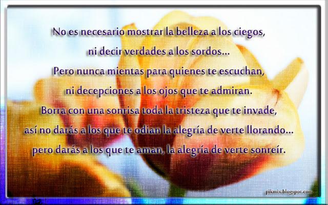 Imagen con frase ~ Verte sonreír ~ Tulipanes