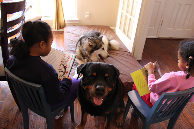 Siblings reading to their dogs