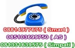 Phone Kami
