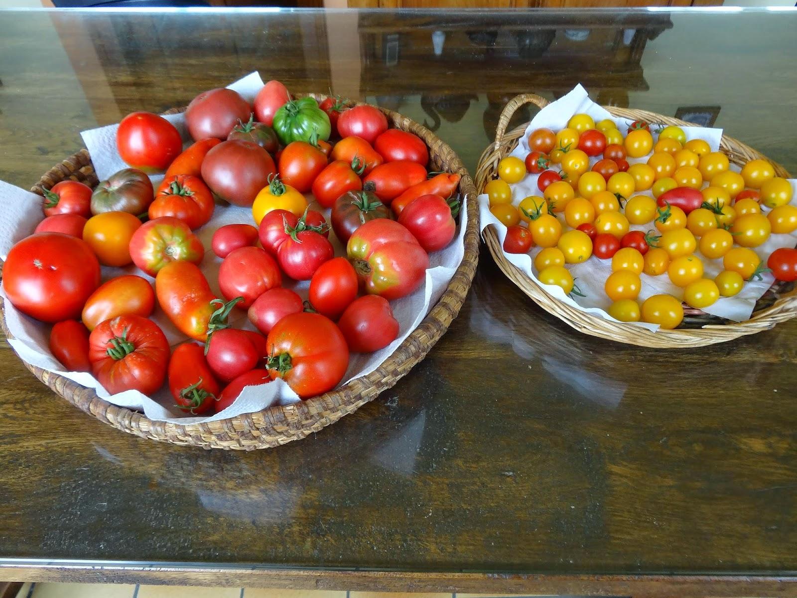 le blog de parcs et jardins de l 39 oise de vraies tomates. Black Bedroom Furniture Sets. Home Design Ideas