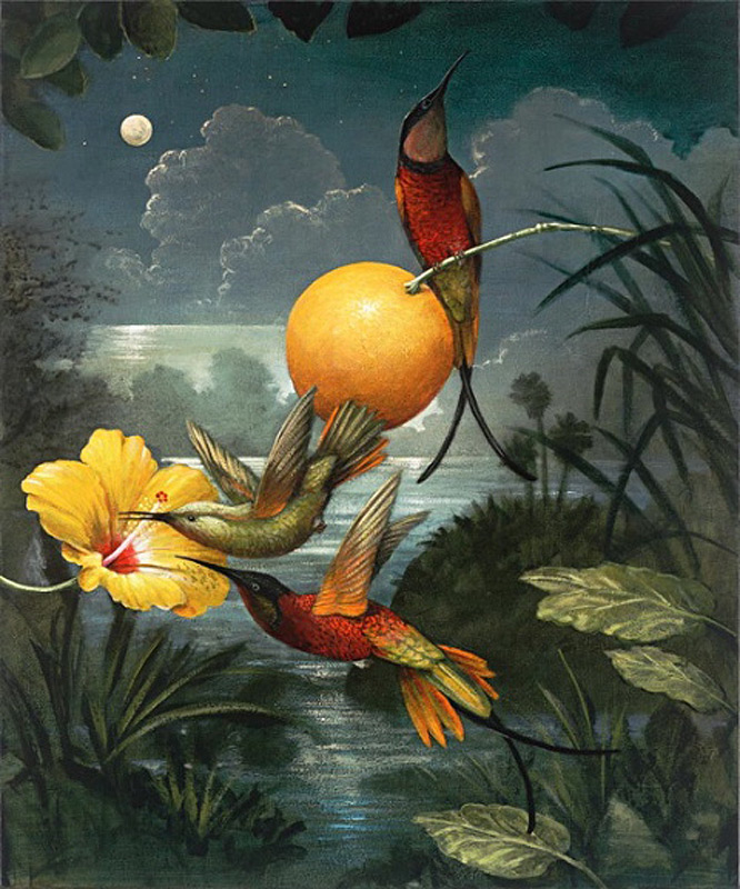 kevin sloan exotic evening