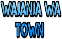 WAJANJA WA TOWN