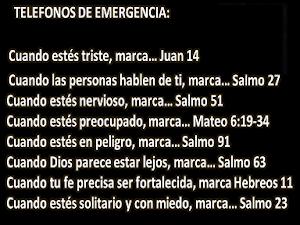 """""""Pidan y se les dará, busquen y encontrarán, llamen y se les abrirá..."""" Lc 11:9-13"""