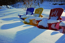 Snow covered Muskoka chairs