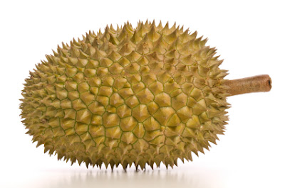 Durian – en frukt