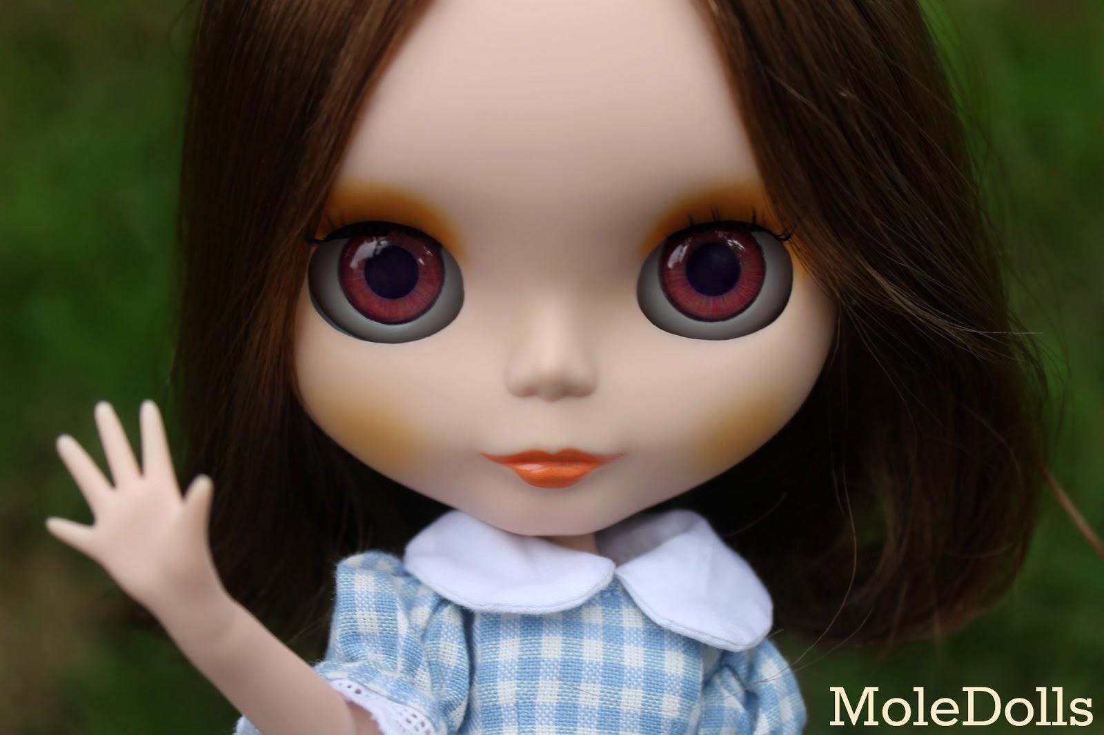 MoleDolls: New Neo Blythe Custom N.65