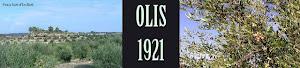 OLIS 1921