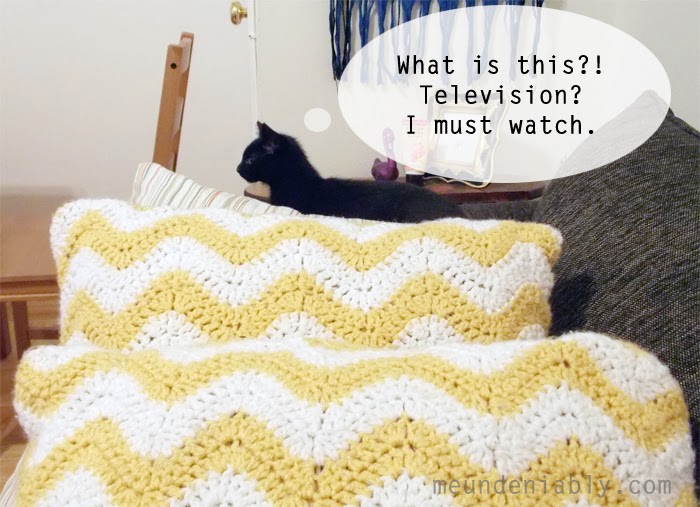 Sarcastic Black Cat Kitten Watching TV