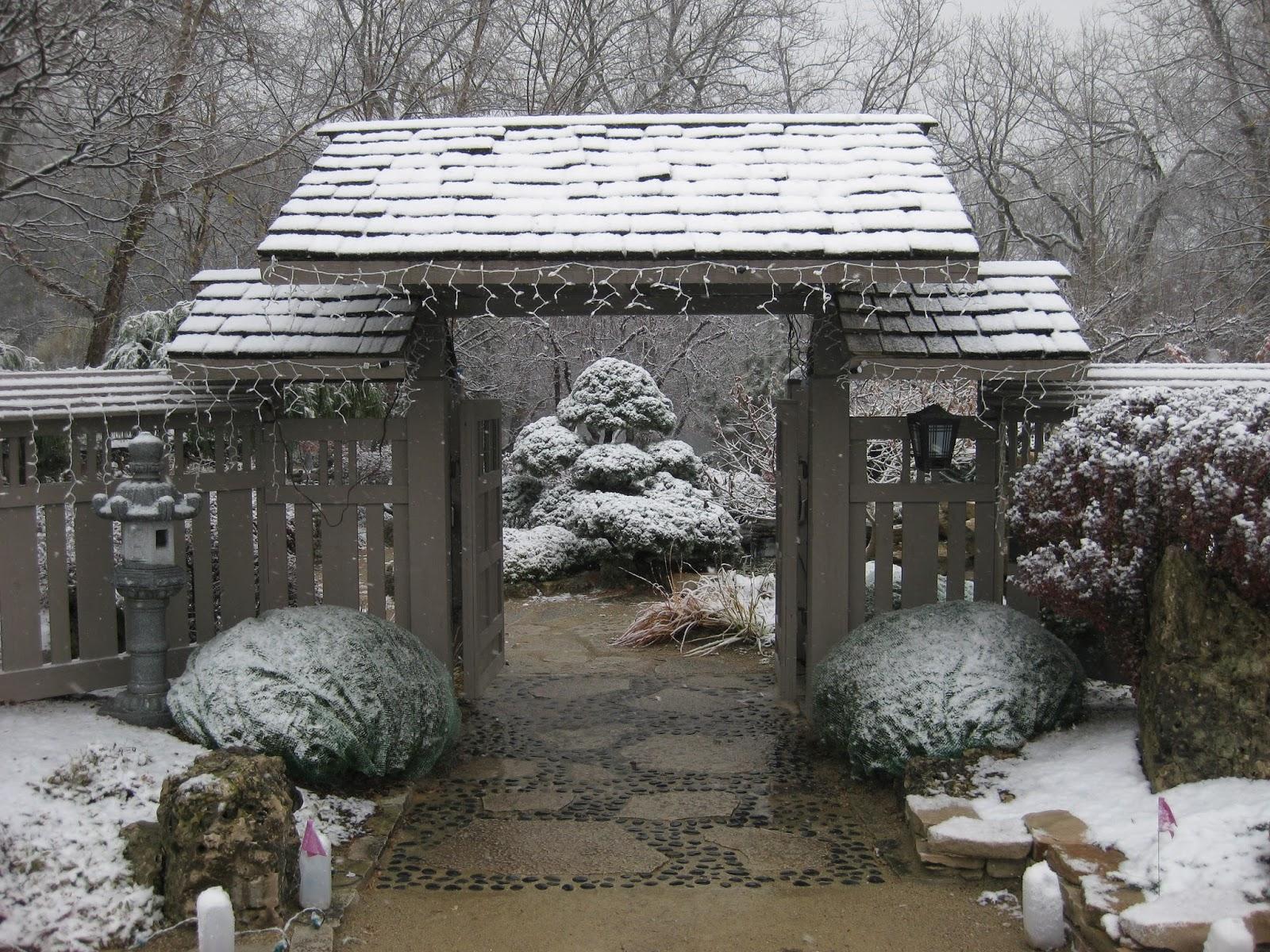 rotary botanical gardens hort blog a temporary winter wonderland