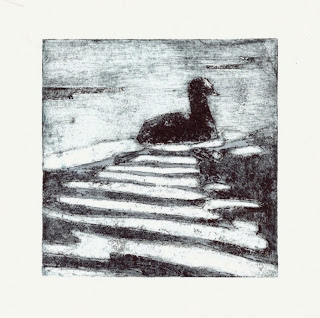 Coot collagraph handmade print