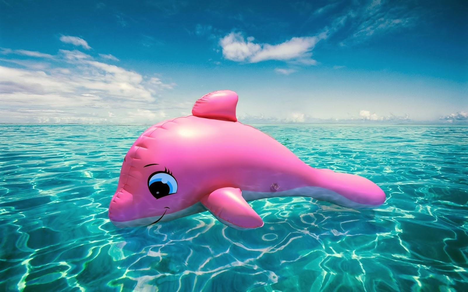Roze Dolfijn In Blauw Water Hd Wallpapers
