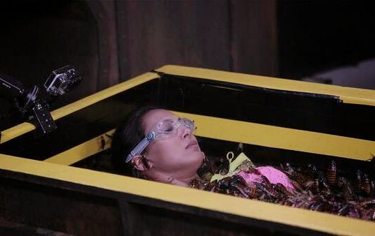 Rochelle with cockroaches, crickets and spiders in coffin for torture tunnel stunt of Fear Factor Khatron Ke khiladi