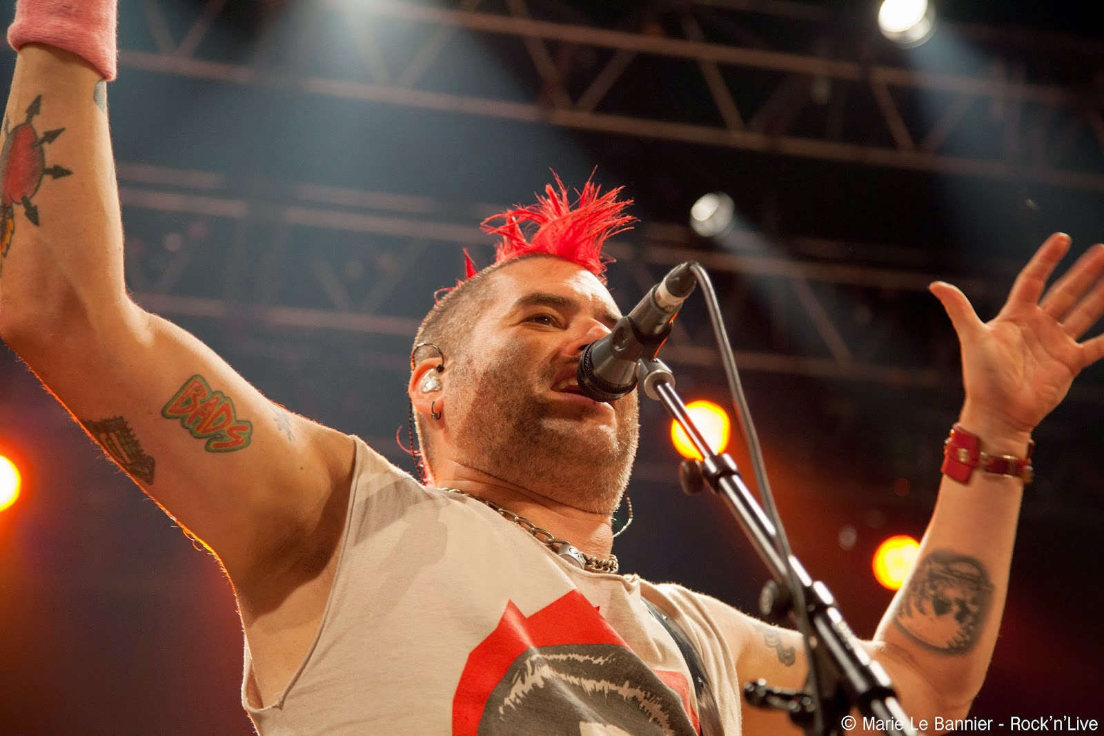 NOFX Fat Mike Trianon Paris Rock'n'Live 2014 Concert Live Punk Rock We Care Booking Marie Le Bannier Linoleum 72 Hookers 60% Leave It Alone Fat Wreck Chords