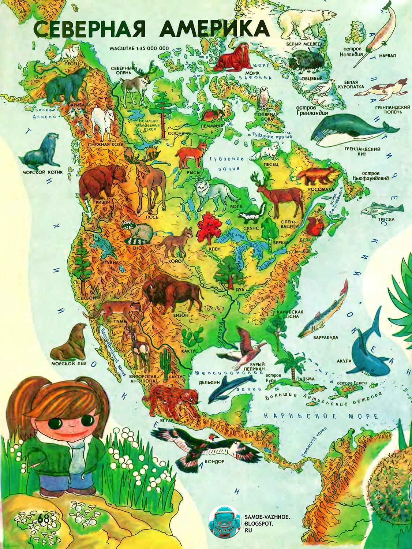 Советские детские книги. Мир вокруг нас. Мир вокруг нас СССР. Мир вокруг нас географический атлас для детей СССР. Мир вокруг нас энциклопедия. Мир вокруг нас книга. Мир вокруг нас атлас. Мир вокруг нас книга читать. Мир вокруг нас. географический атлас для детей. Мир вокруг нас атлас читать. Мир вокруг нас большая книга. Мир вокруг нас географический атлас для детей читать. Мир и человек любимый детский атлас. Мир и человек атлас. Мир вокруг нас атлас читать онлайн. Мир вокруг нас книга читать. Мир и человек атлас читать. Детский атлас СССР. Детский атлас мира. Мир и человек атлас читать онлайн. Атлас мир и человек. Атлас мир вокруг нас. Мир и человек географический атлас онлайн.