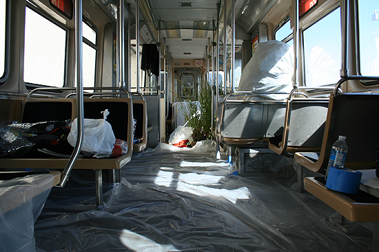 Chicago Cta Bed Bugs