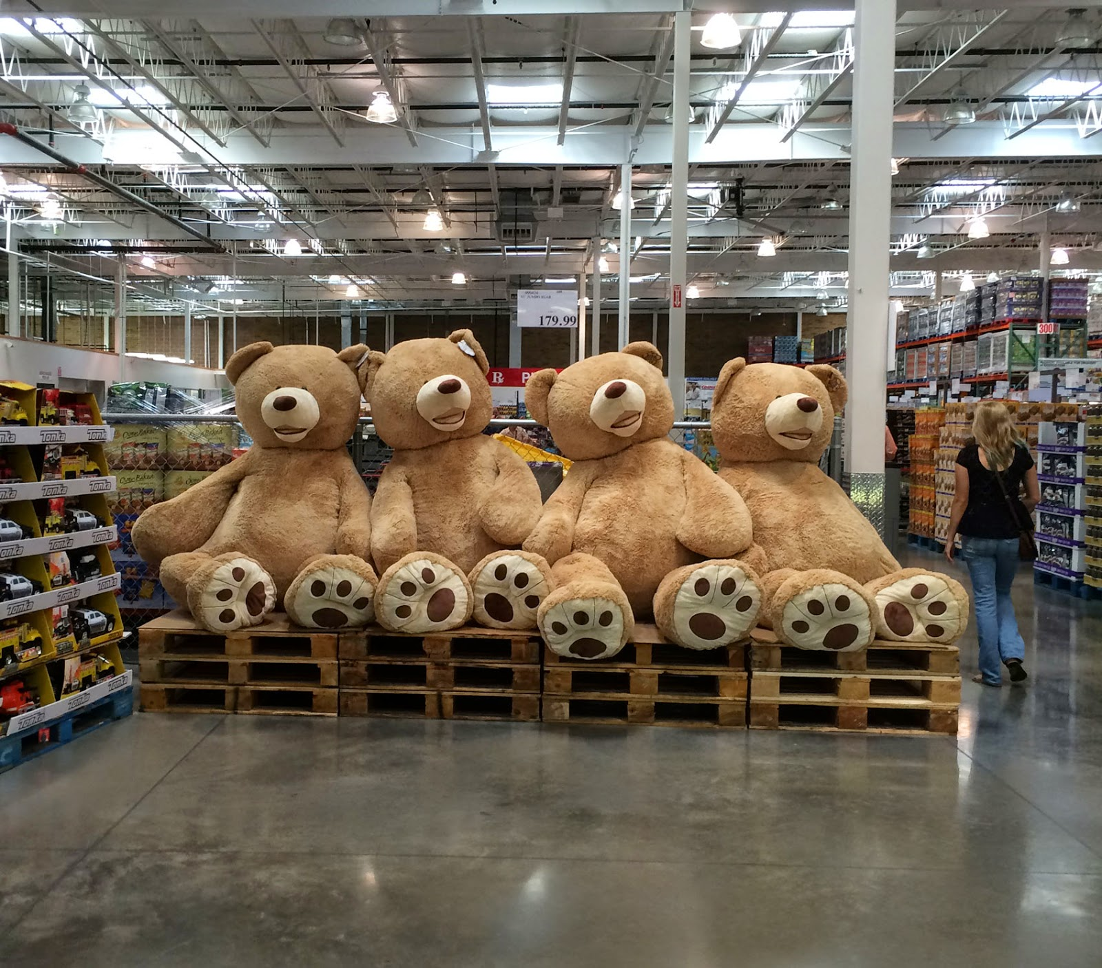 Costco bears