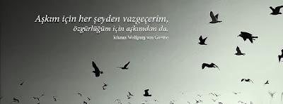 Aşk Sözleri Kapak Fotoğrafı