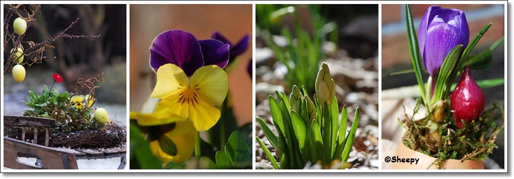 Landleben Frühling
