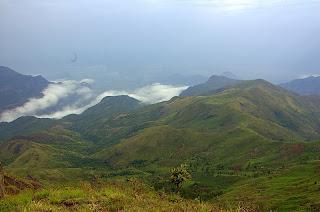 palani hills