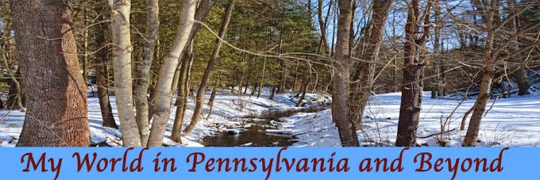 My World in Pennsylvania and Beyond