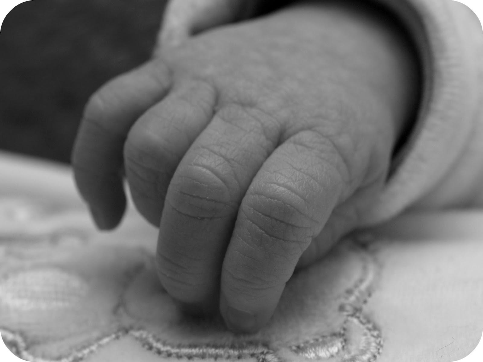 Baby hand - rgbstock.com