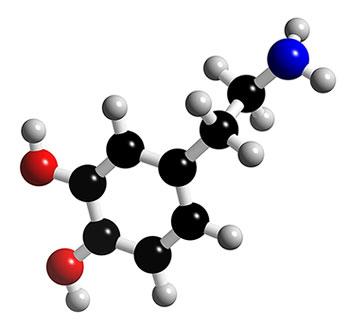 dopamine hypthesis