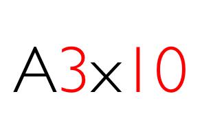 A3x10