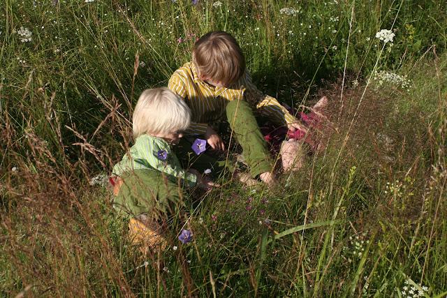 Matti, Anton and Neve in the garden.