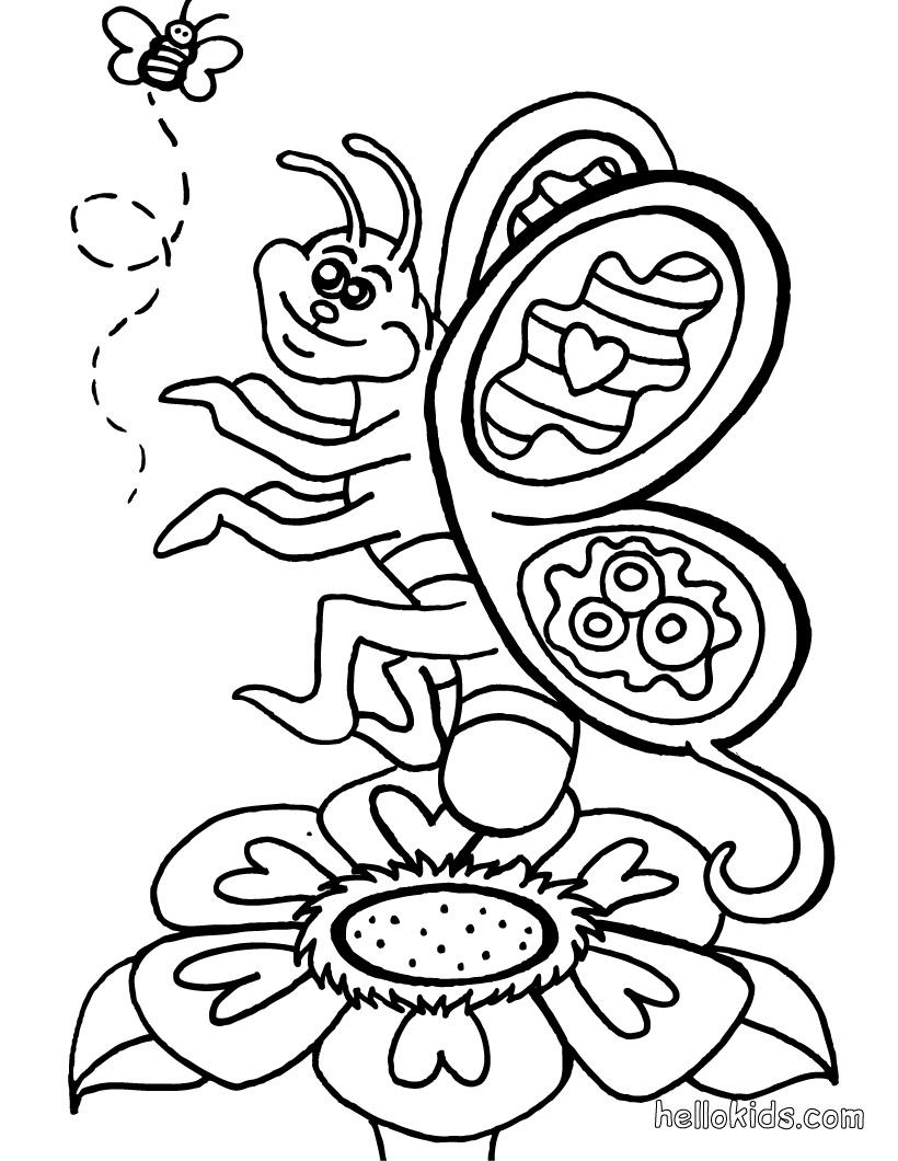 Desenho de Borboletas para Colorir ~ Imagens Para Colorir