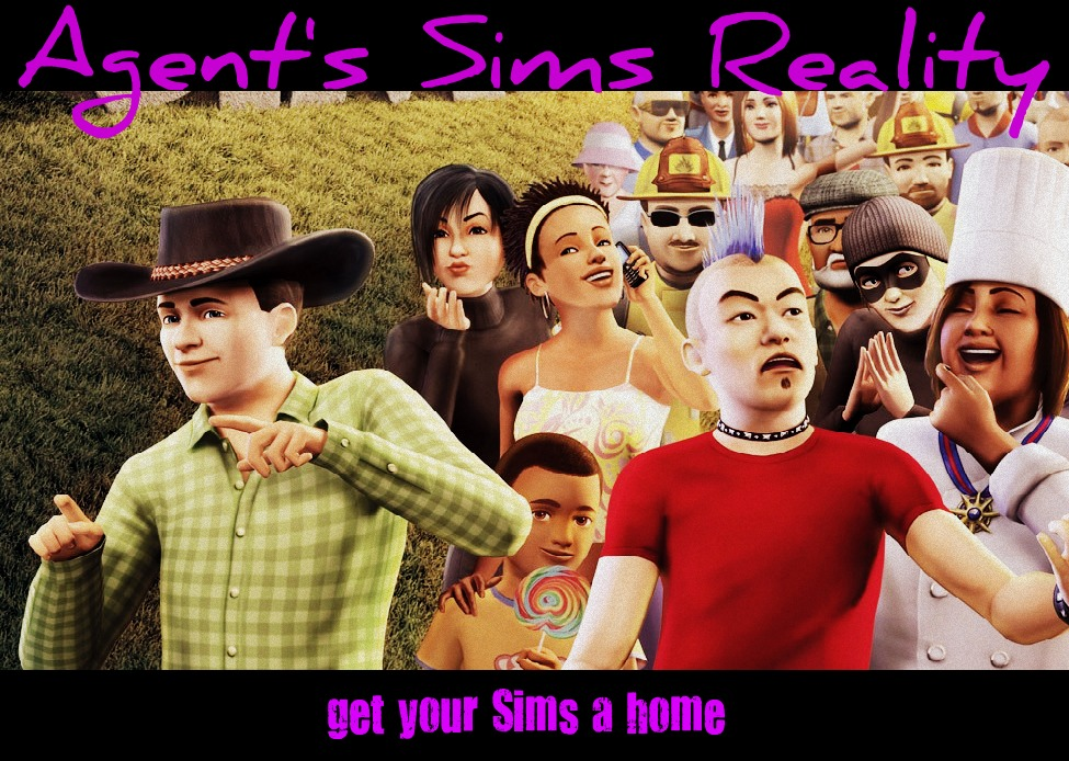 Agent's Sims Reality