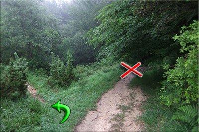 Seguimos el sendero de la Izq.