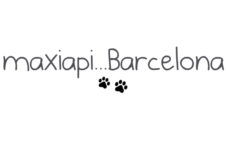maxiapi...Barcelona