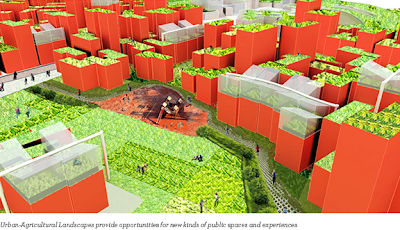Brooklyn Navy Yard - Urban-Agricultural Landscapes
