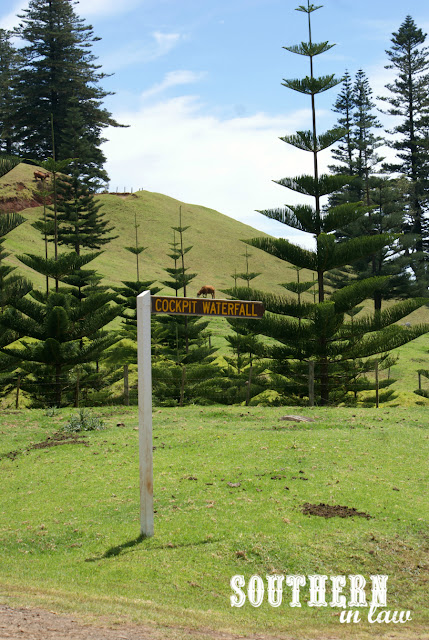 Walking to Cockpit Waterfall Norfolk Island - Healthy Travel Reviews and Recommendations