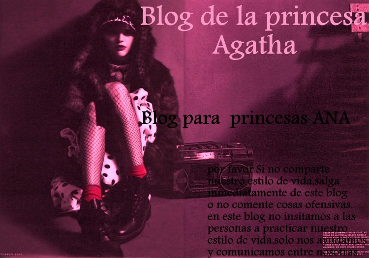 Diario De La Princesa Agatha
