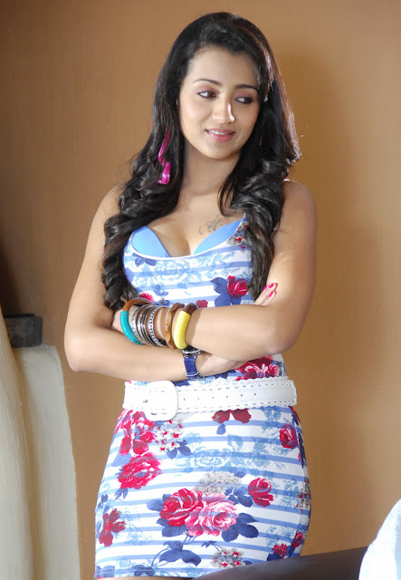 trisha bathroom video photos