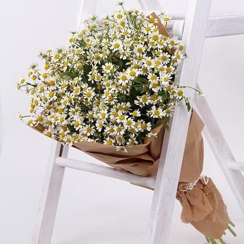Букет ромашек | Флорист Инга Палионите