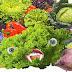 """'Μεταλλάσσουν"""" το ανθρώπινο είδος: 19 μεταλλαγμένες τροφικές και αγροτικές """"νάρκες"""" εγκρίθηκαν από την ΕΕ"""