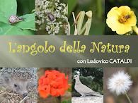 L'Angolo della Natura