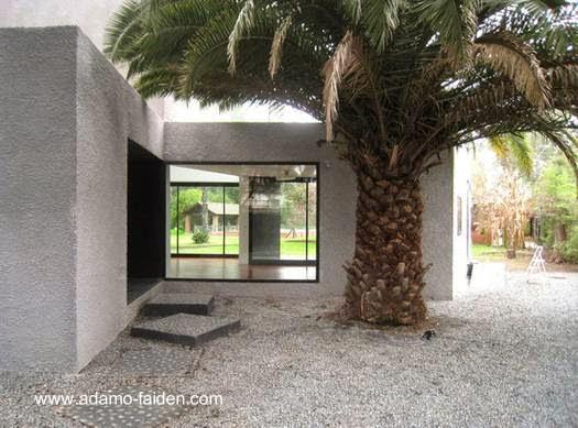 Sector de la moderna casa minimalista junto a una gruesa palmera