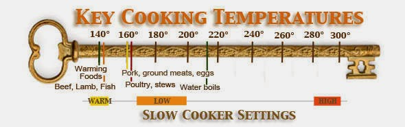 fast-cooking-versus-slow-cooking-technique-culinaryphysics.blogspot.com