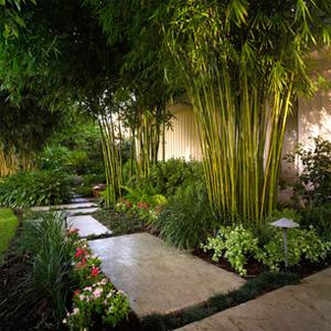 Taman Minimalis Untuk Rumah Modern
